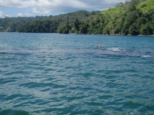 Snorkeling at the Motus - Golfo Dulce